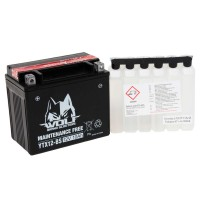 BATTERY - YTX12-BS