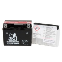 BATTERY - YTX4L-BS